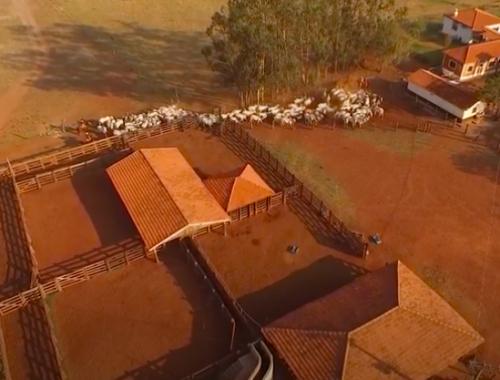Centro de Pesquisa Nutripura – Vídeo Tour 360° CPN